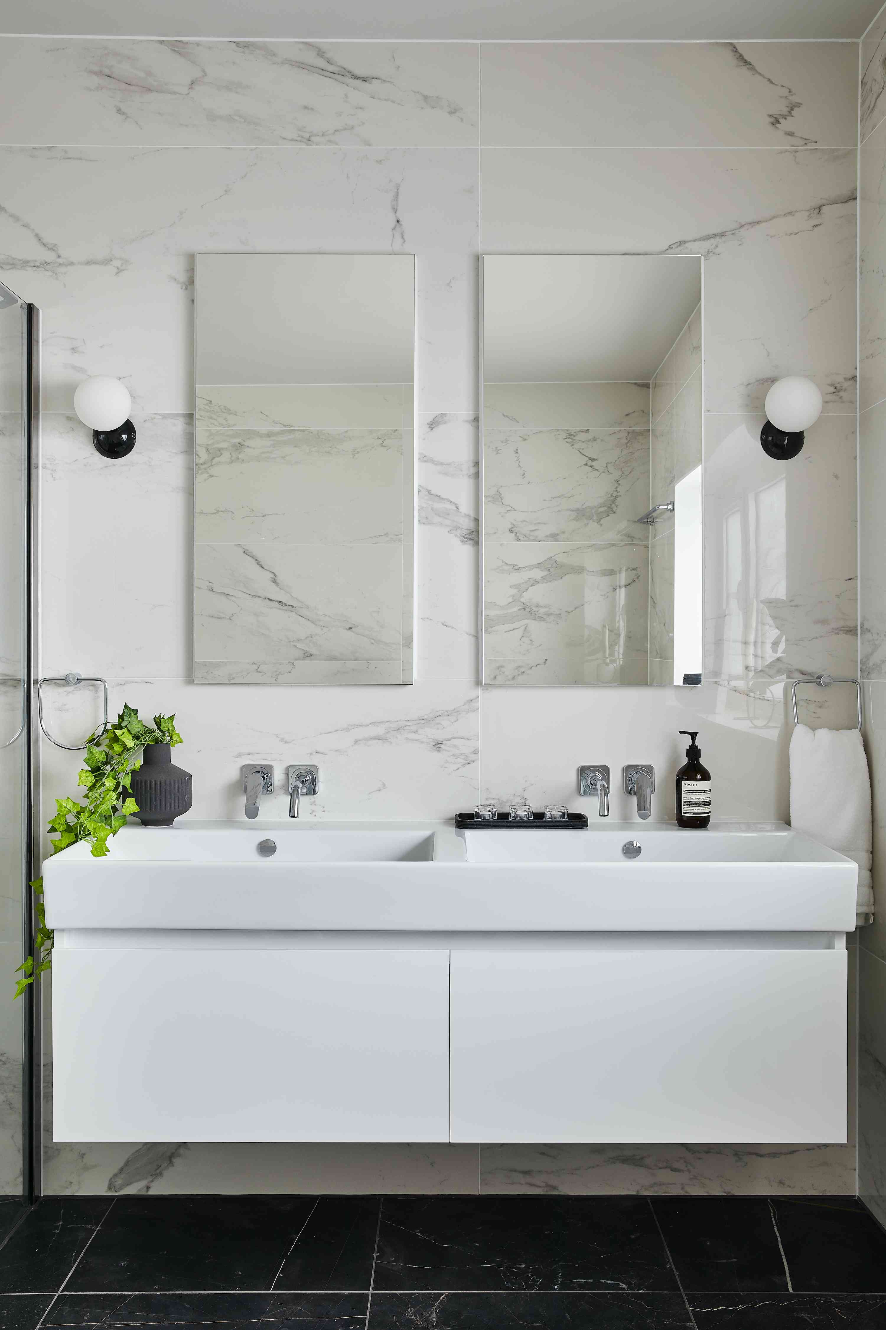 black and white bathroom with plant