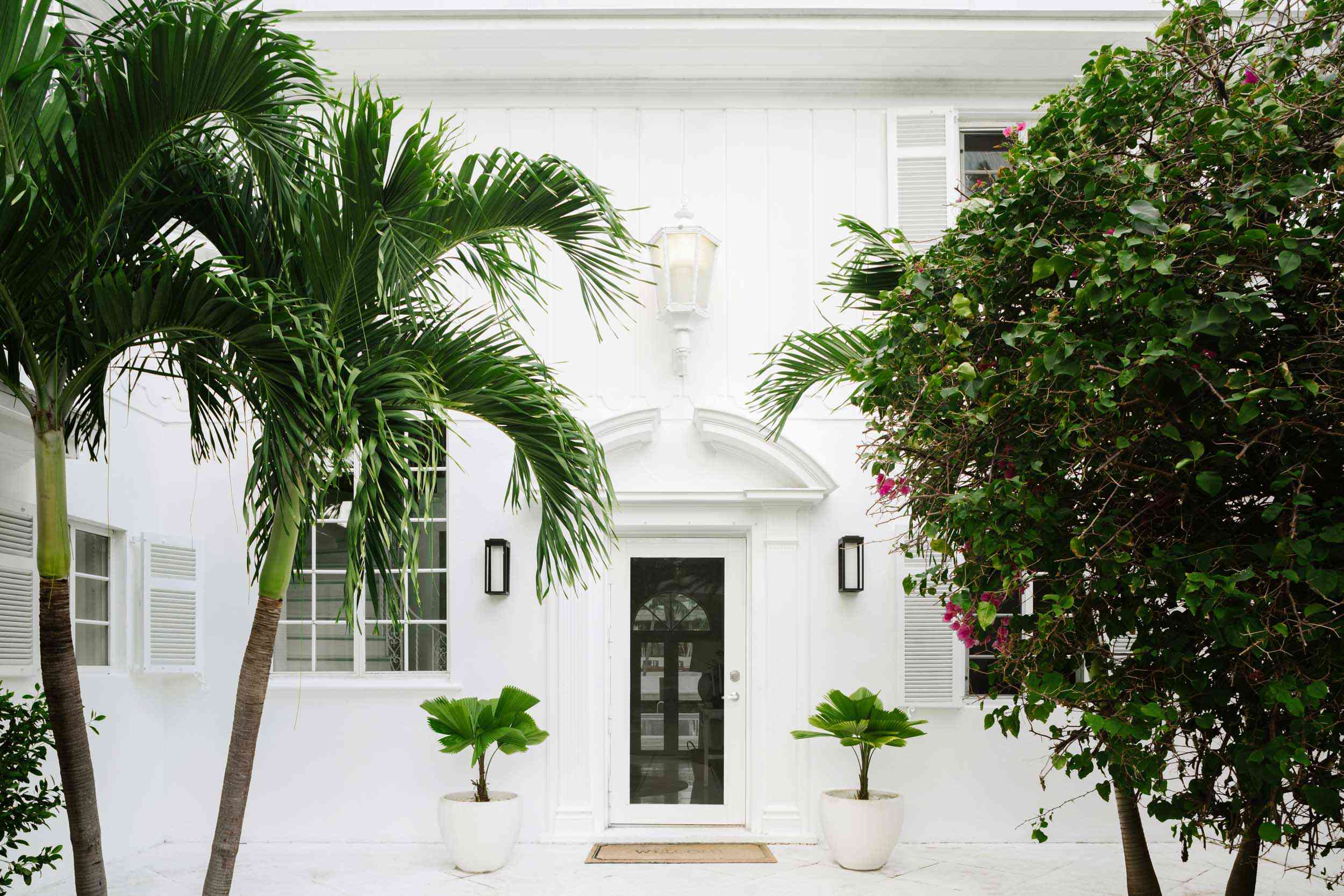 Front door of Miami home with two small palm trees.