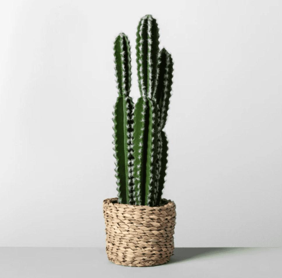 faux target cactus