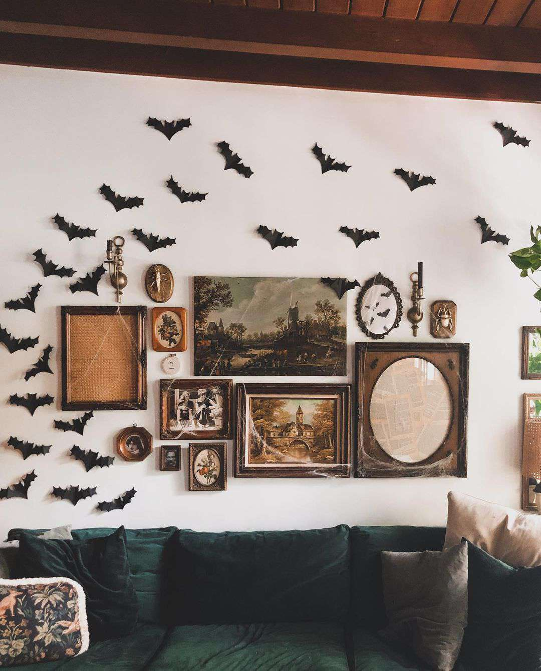 Bats on a gallery wall