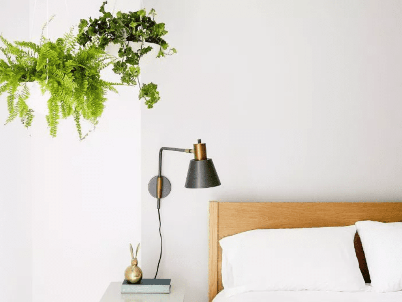 Minimalist bedroom with white walls, wooden headboard, sconce, and hanging plant in corner