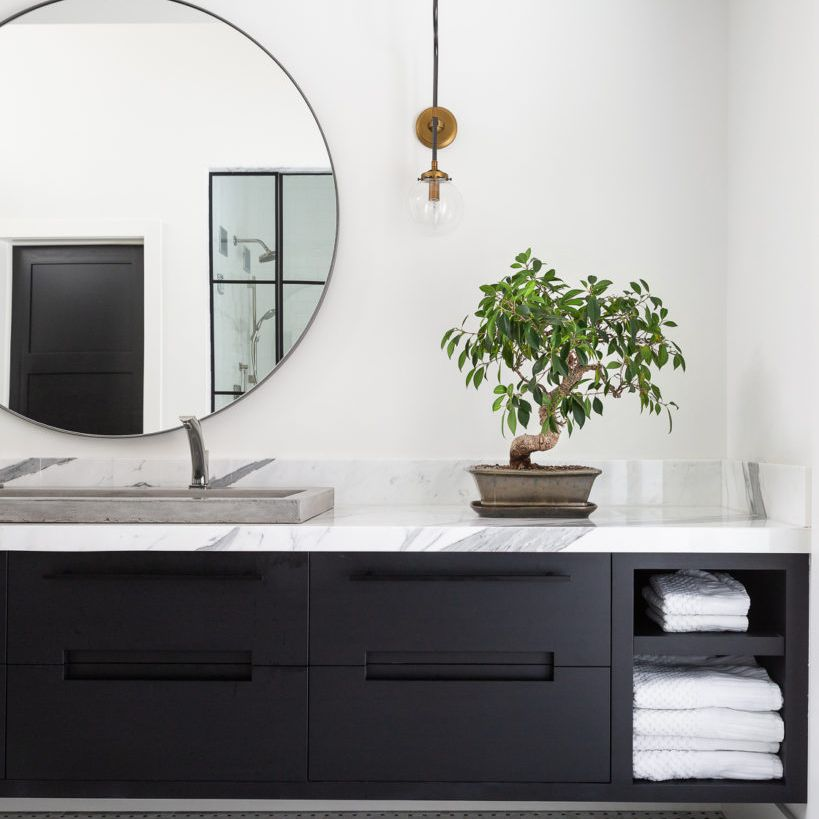 Spa-like bathroom with black and white color palette and tabletop tree