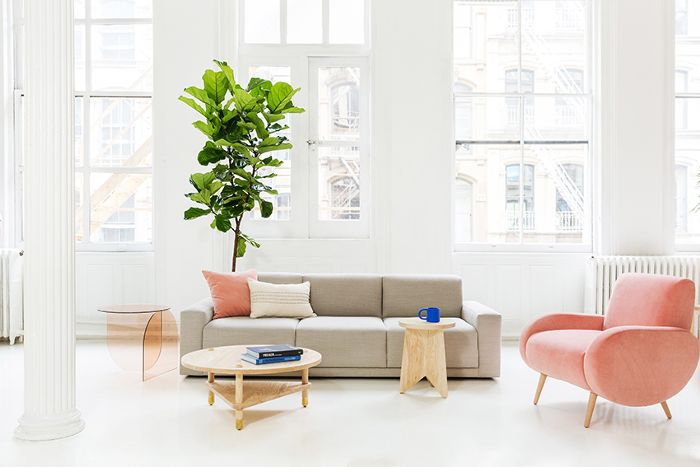 Consort Furniture Collection