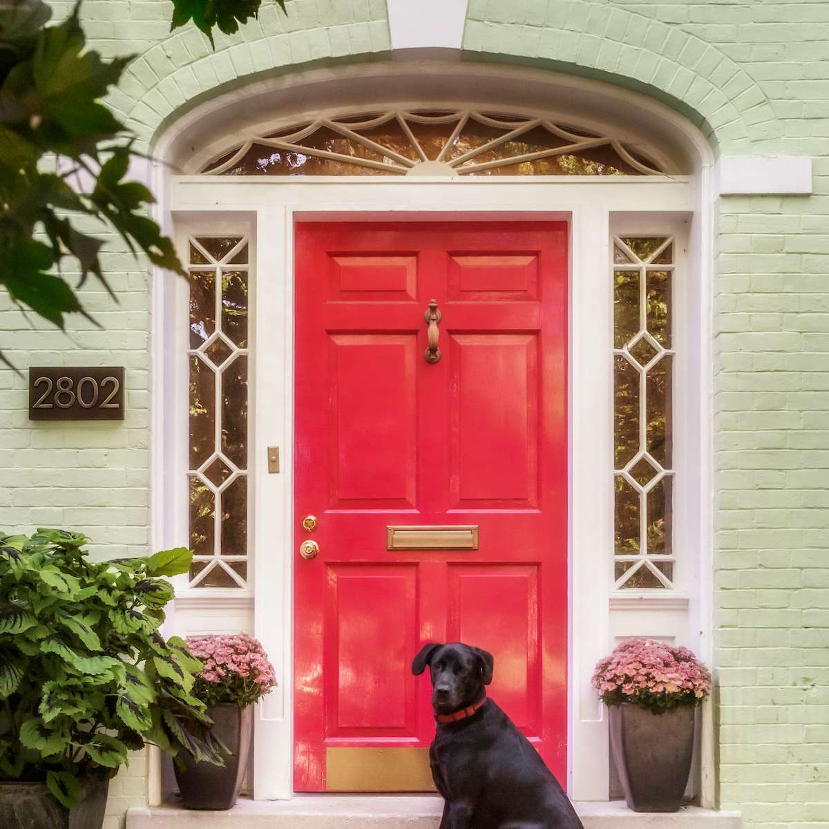 Bright pink door