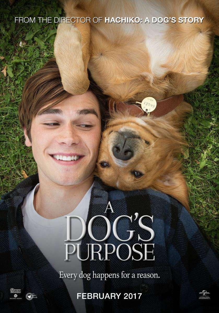 A Dogs Purpose