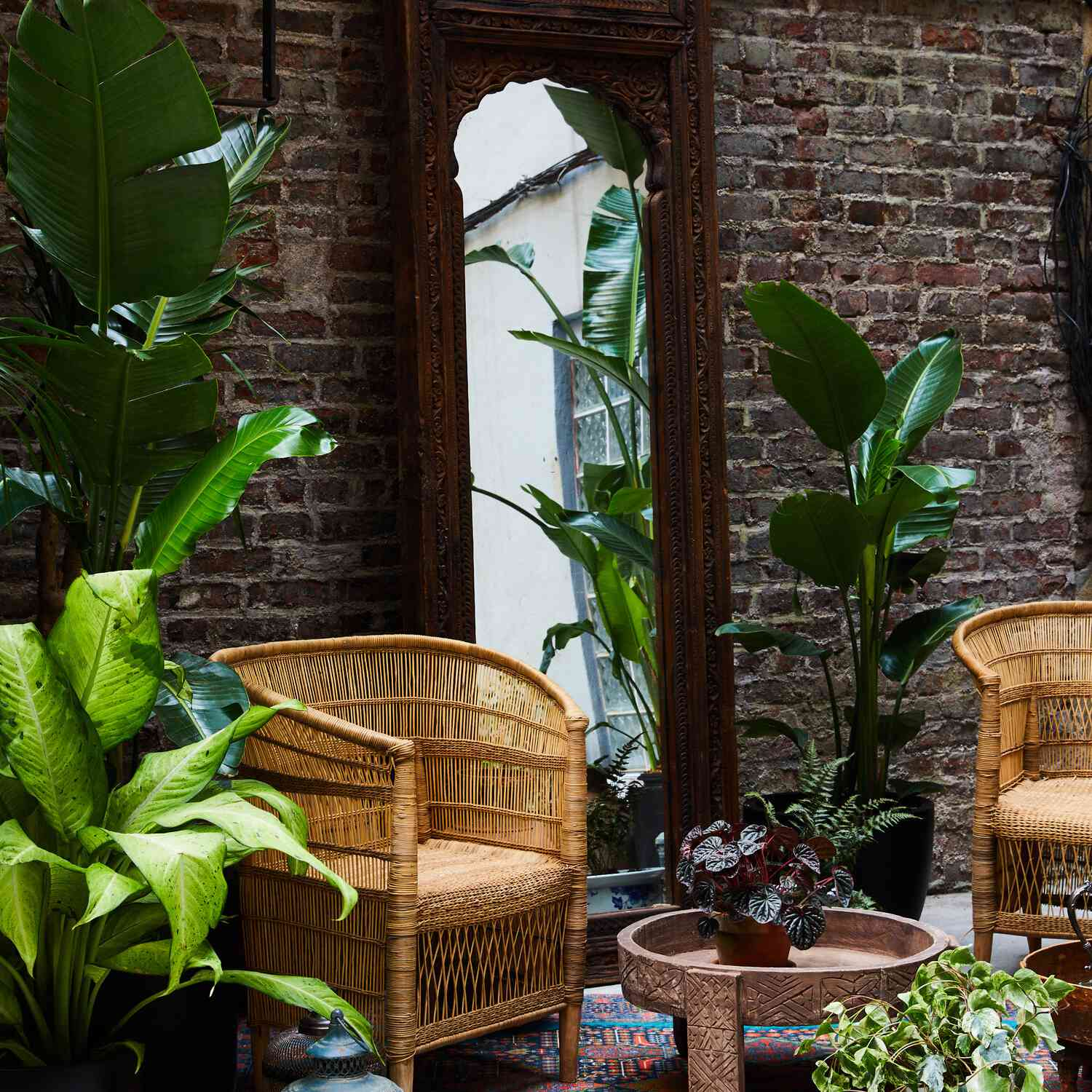 Outdoor patio with lots of plants.