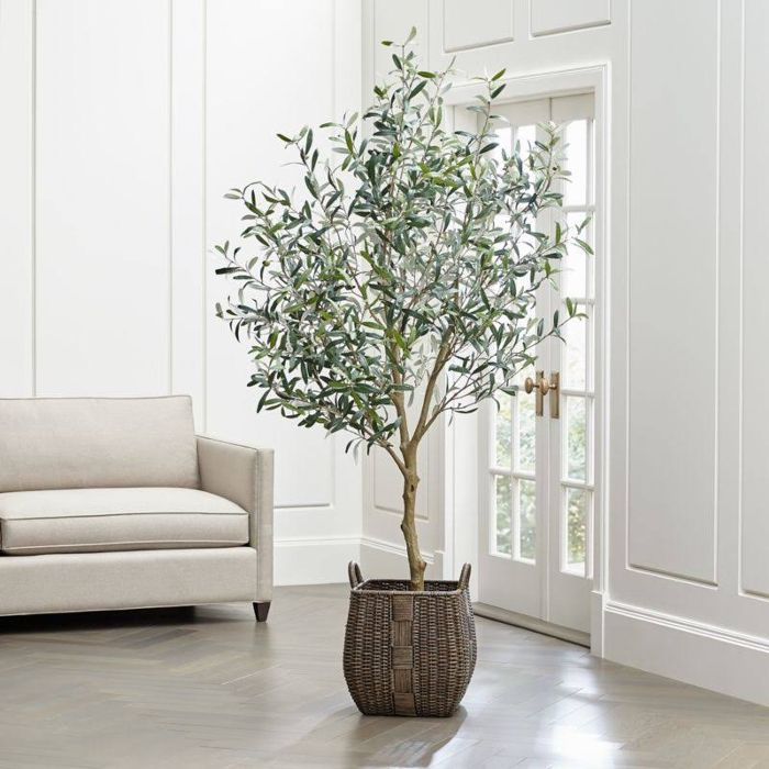 Crate & Barrel Faux Olive Tree