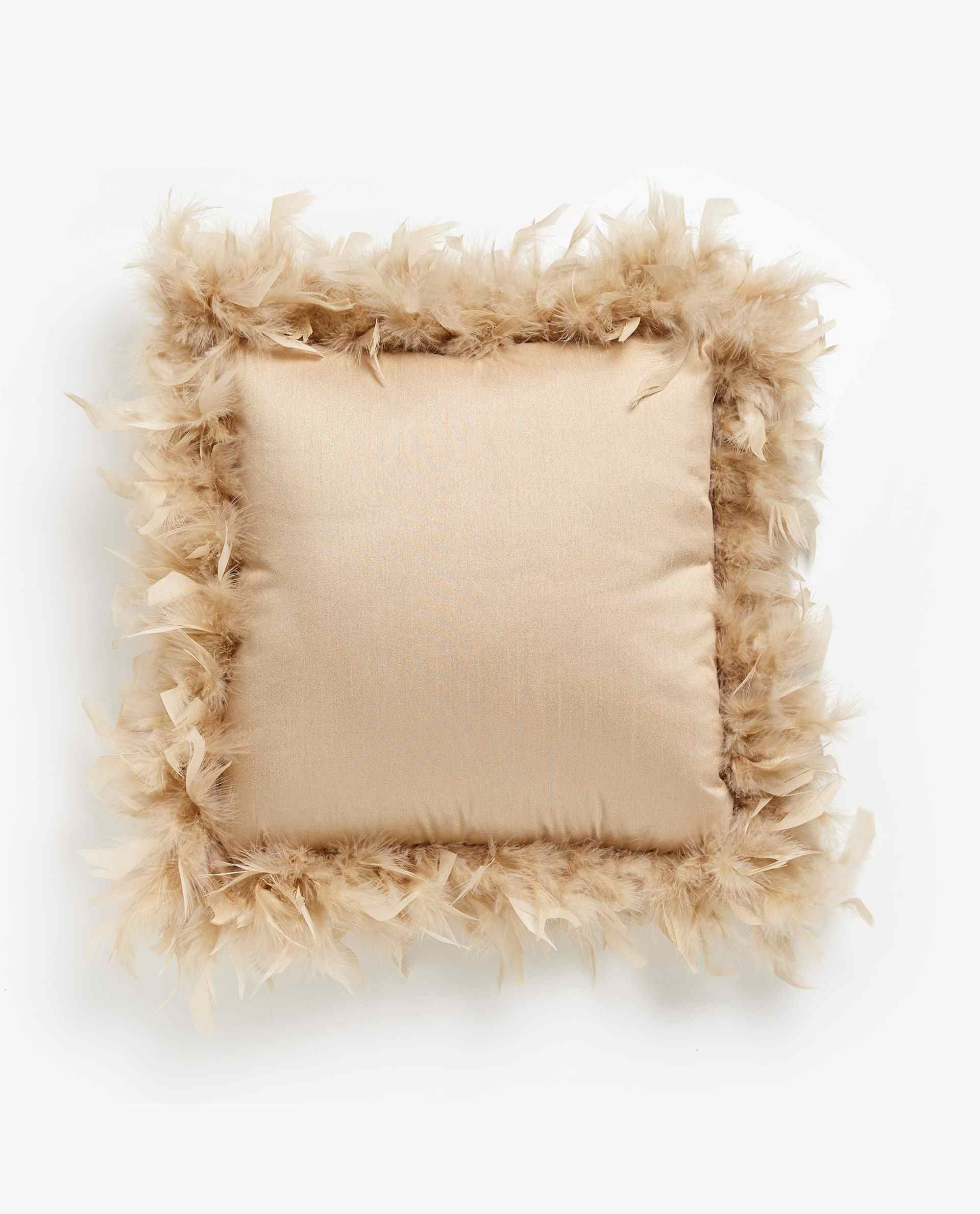 Throw Pillow with Feathers