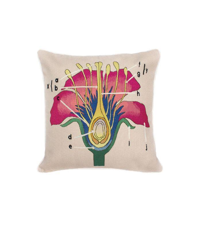 Christopher Kane x The Rug Company Botanical Anatomy Cushion