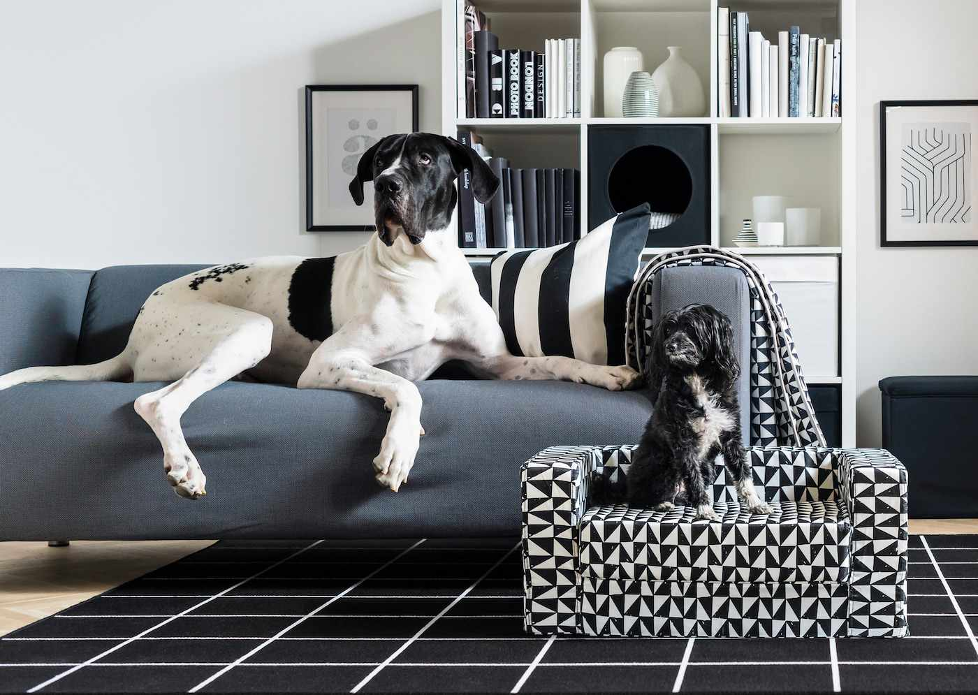 IKEA LURVIG Cat and Dog Furniture Line Best Products on dog food furniture, dog home decorations, dog jewelry, dog houses, dog home art, dog glass furniture, cat furniture, dog home decor, dog curtains, dog wardrobe, dog chairs, dog bathroom, dog pharmacy, dog home security, dog design, dog bed furniture, dog home accessories,