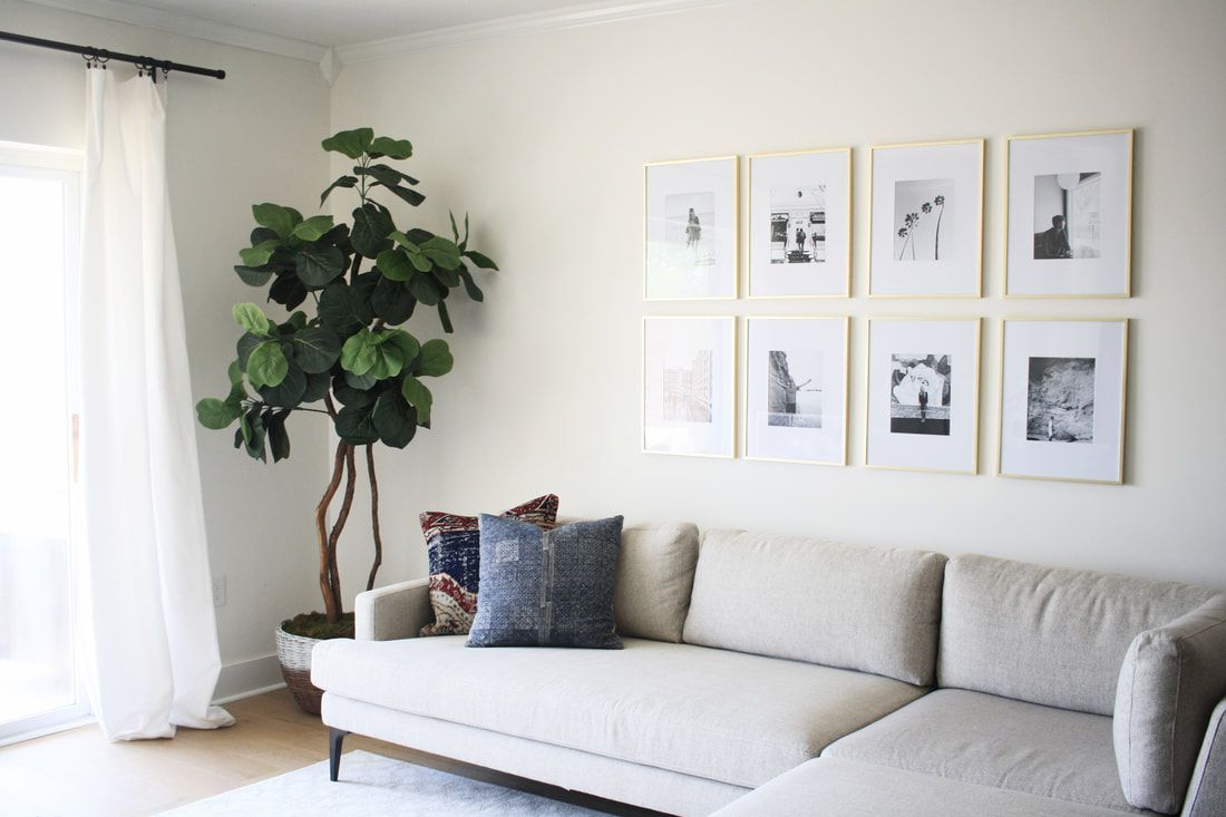 light gray couch in living room with black and white wall art and plant