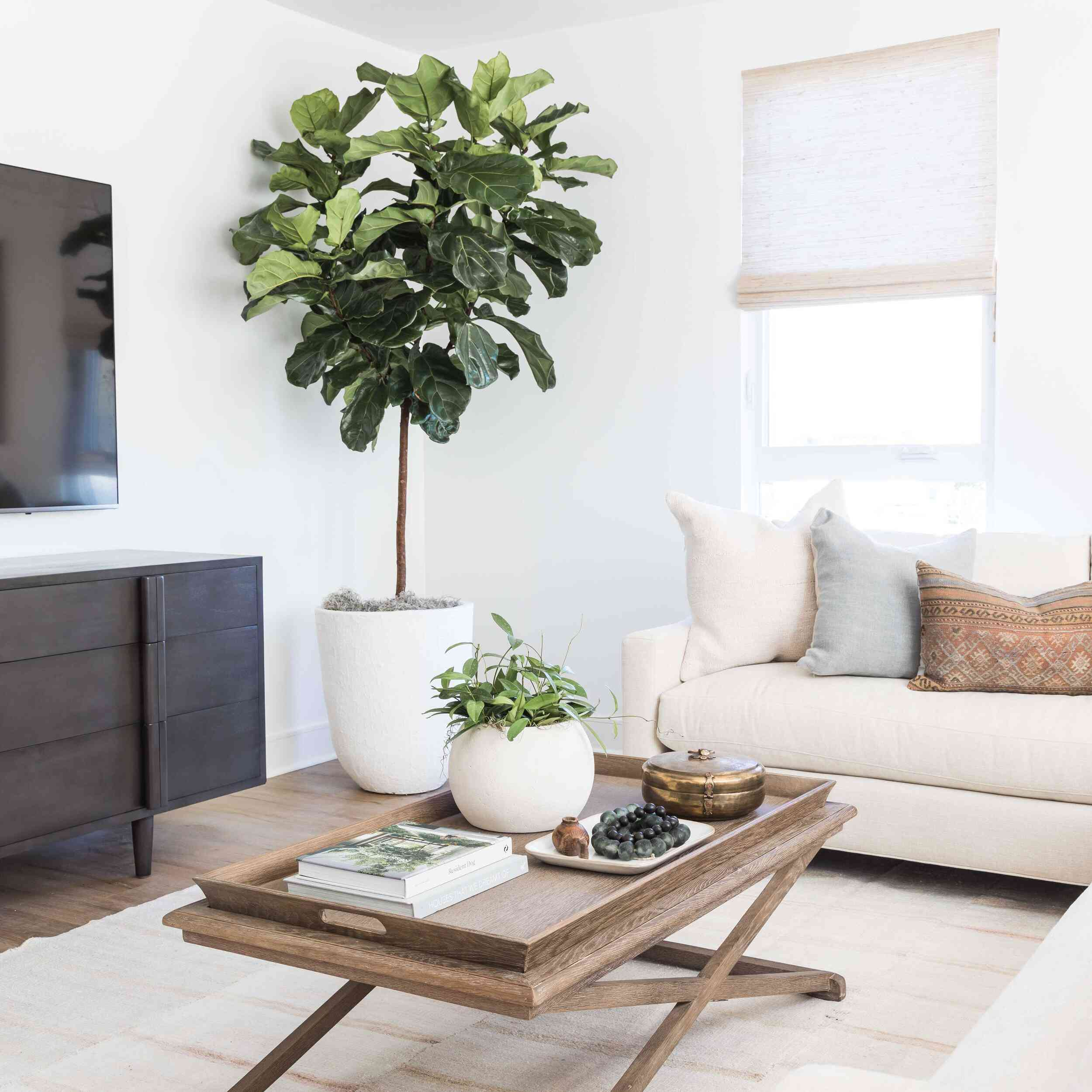 Eclectic styled coffee table in a fresh, modern family room