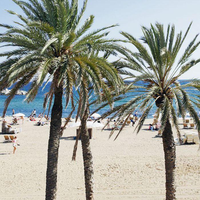 Las mejores zonas para alojarse en Barcelona: la Barceloneta