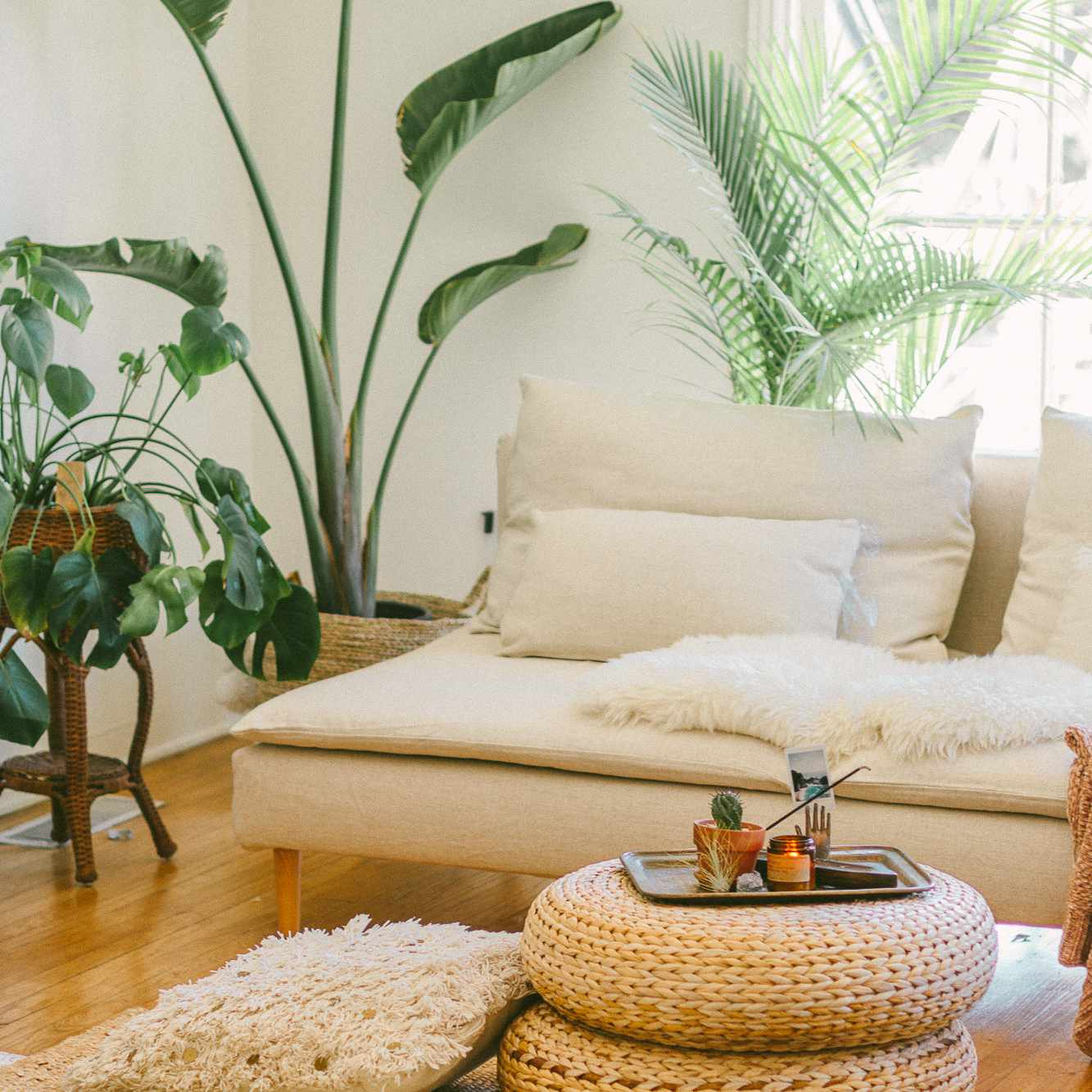 Chic boho living room with low furniture and floor pillows