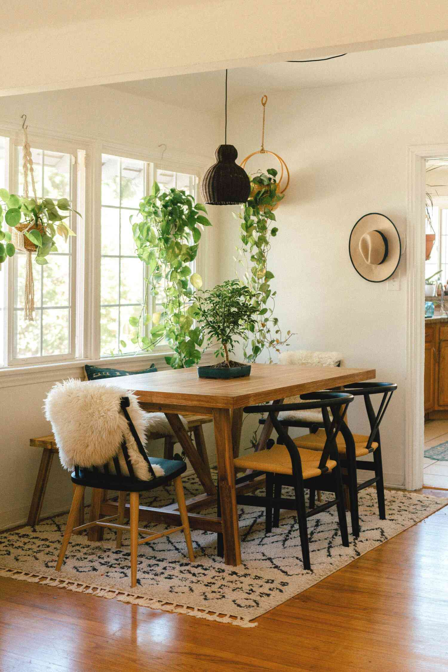 Three pothos plants hanging in a southwestern dining room