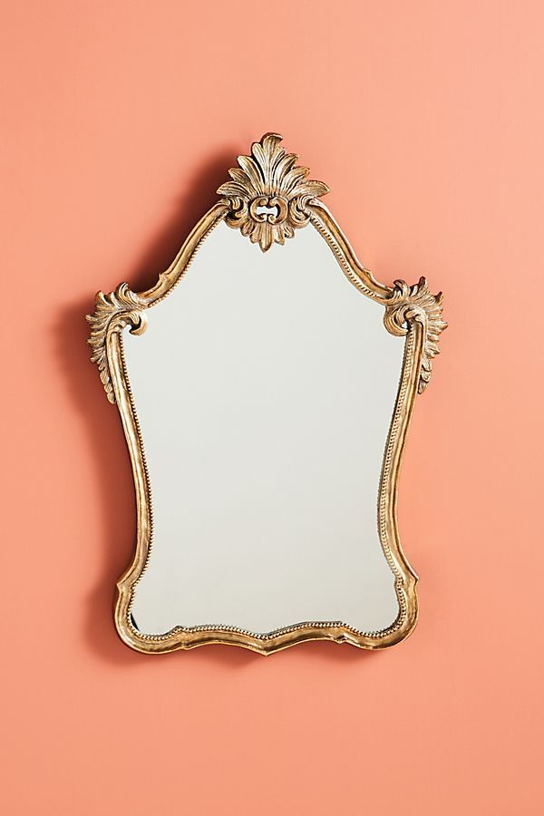 Anthropologie Penelope Arch Mirror