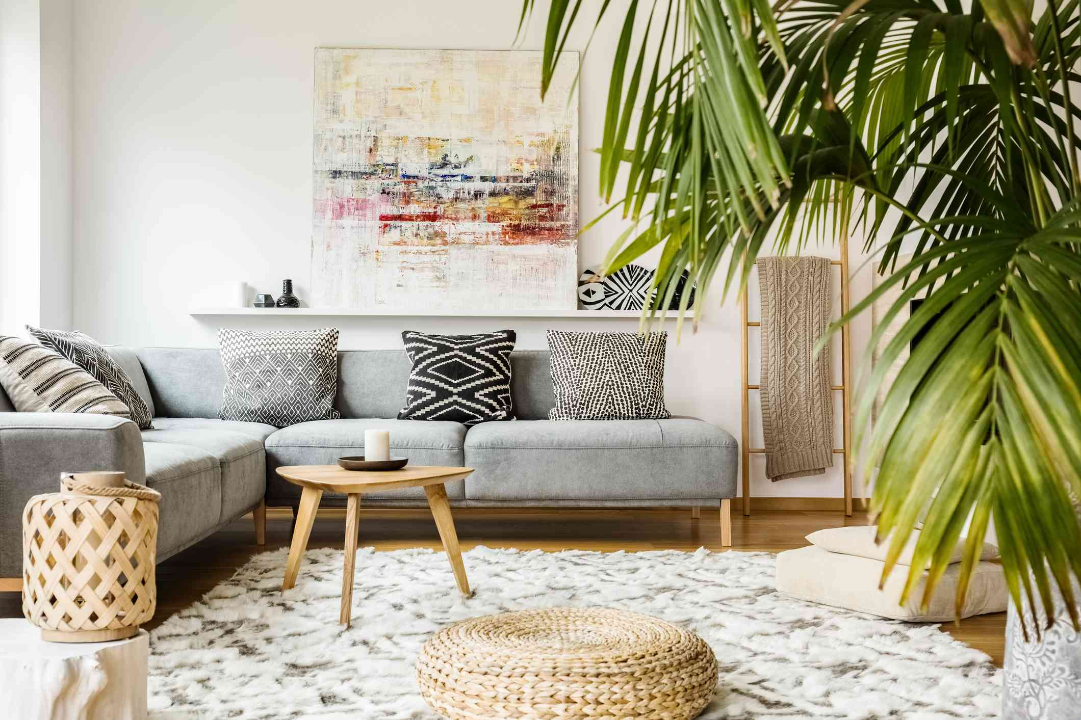 Tall indoor palm tree growing in living room
