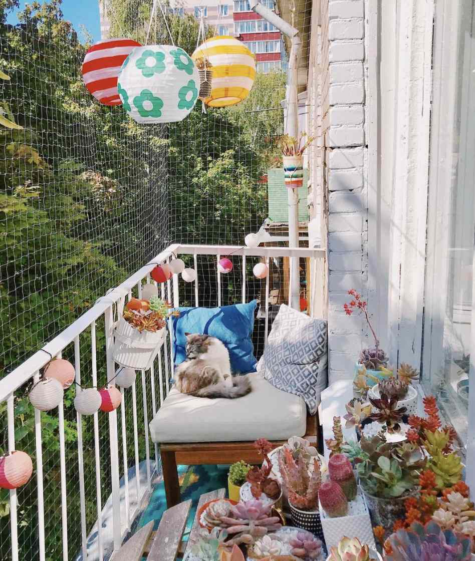 colorful balcony with paper lantern lights, box of succulents, white chair with two accents pillows, cat curled up on chair