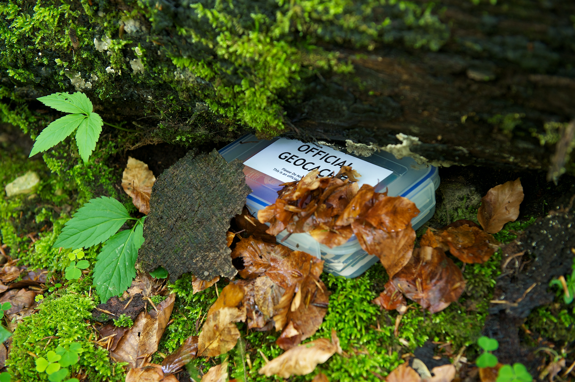 Hidden geocaching box