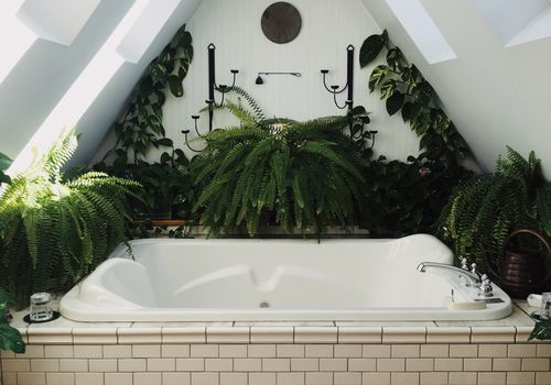 A-frame bathroom with ferns and plants surrounding jacuzzi tub
