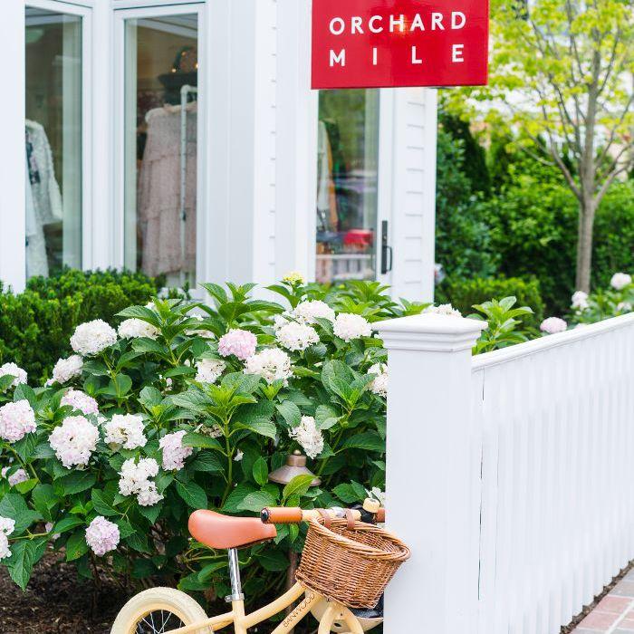 Cosas que hacer en Martha's Vineyard — Orchard Mile
