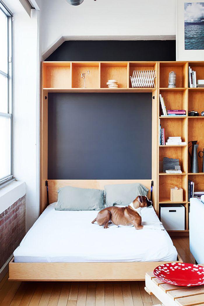 a dog sitting on a bed