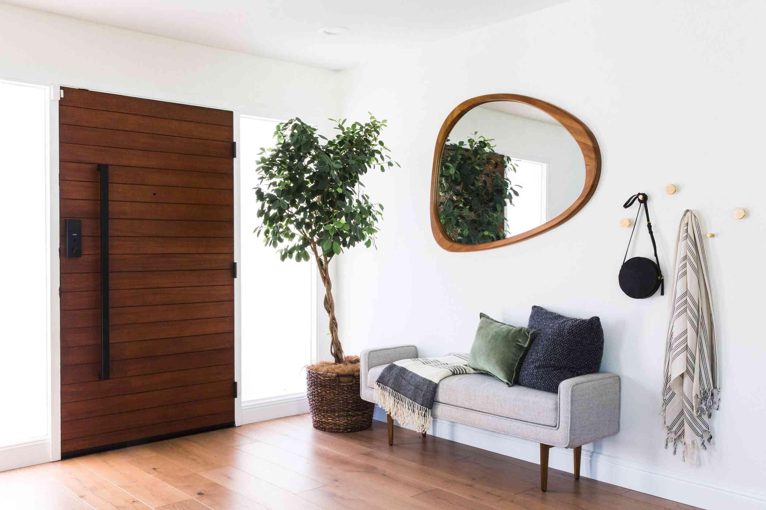 Weeping fig in a modern entryway