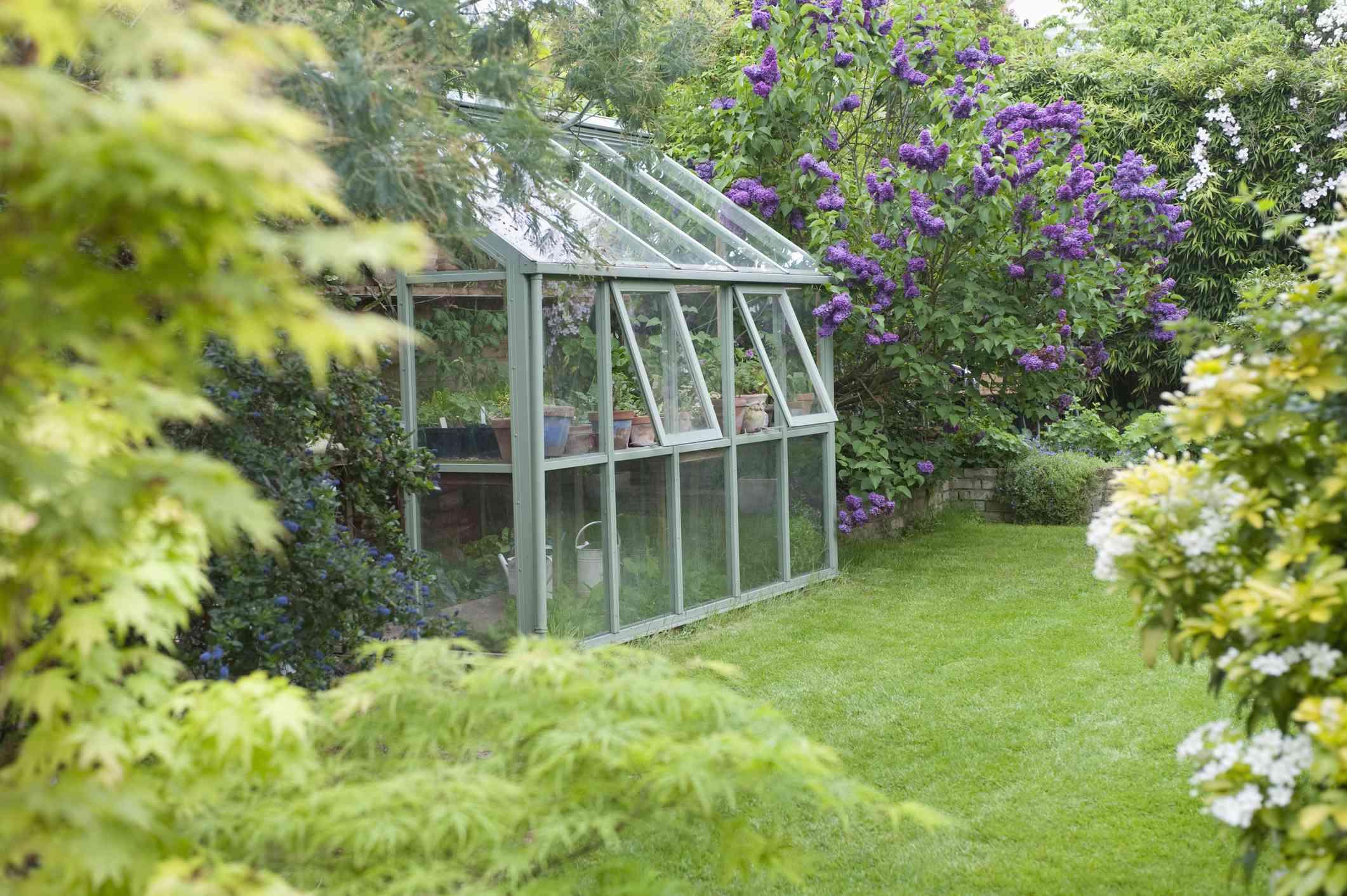 A greenhouse in a backyard.