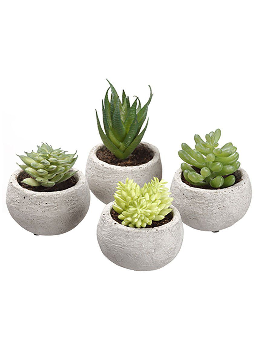 set of 4 fake succulents