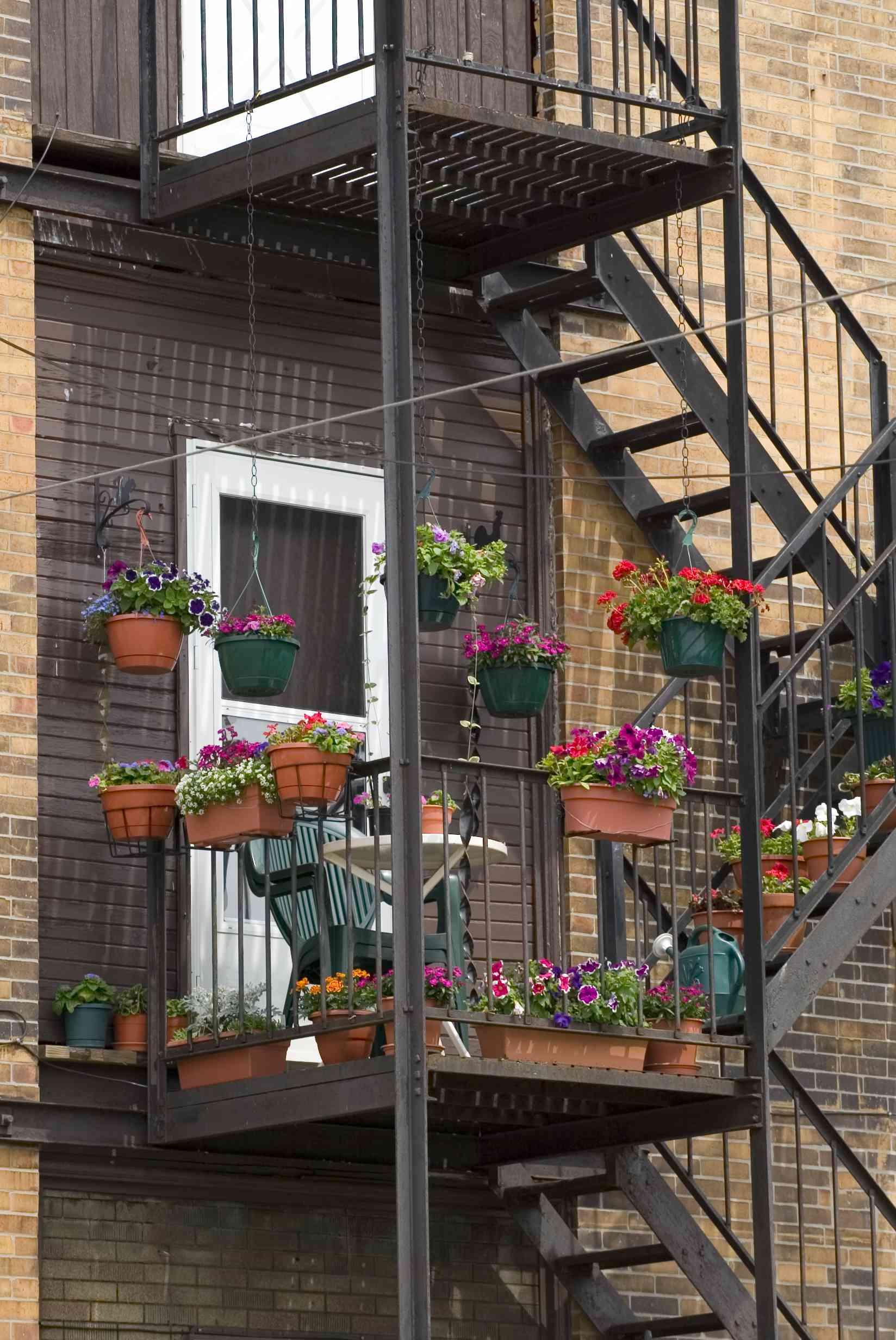 A garden on a fire escape.
