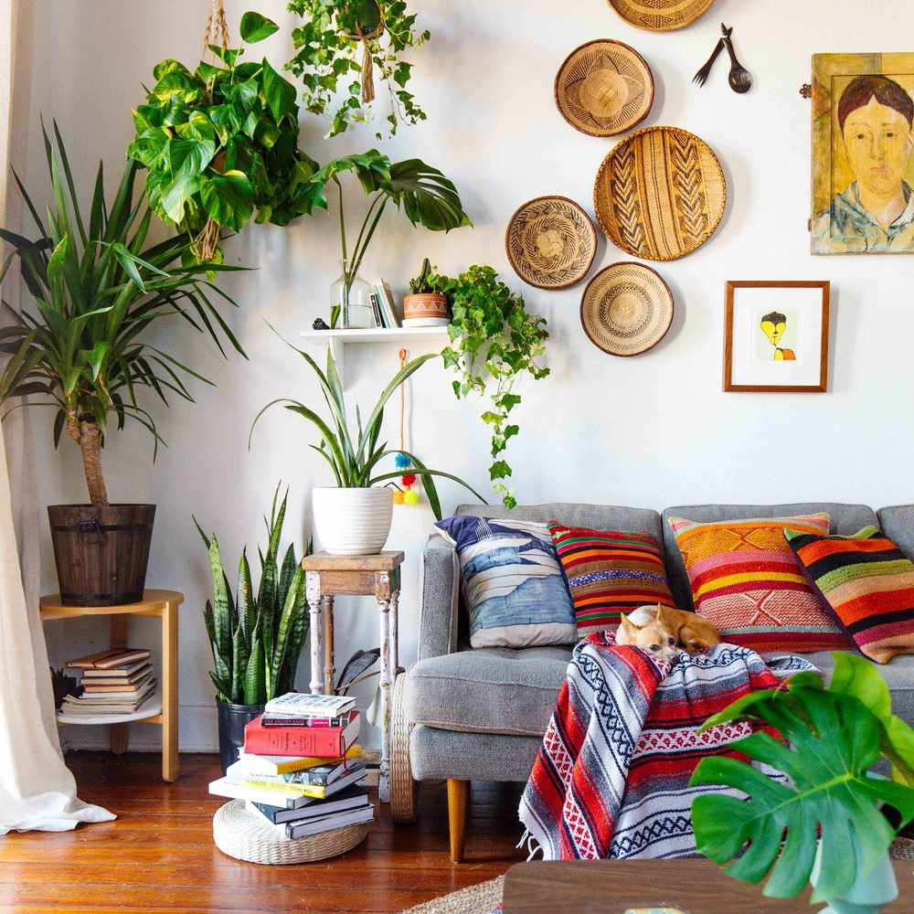 white living room with planters and gallery wall