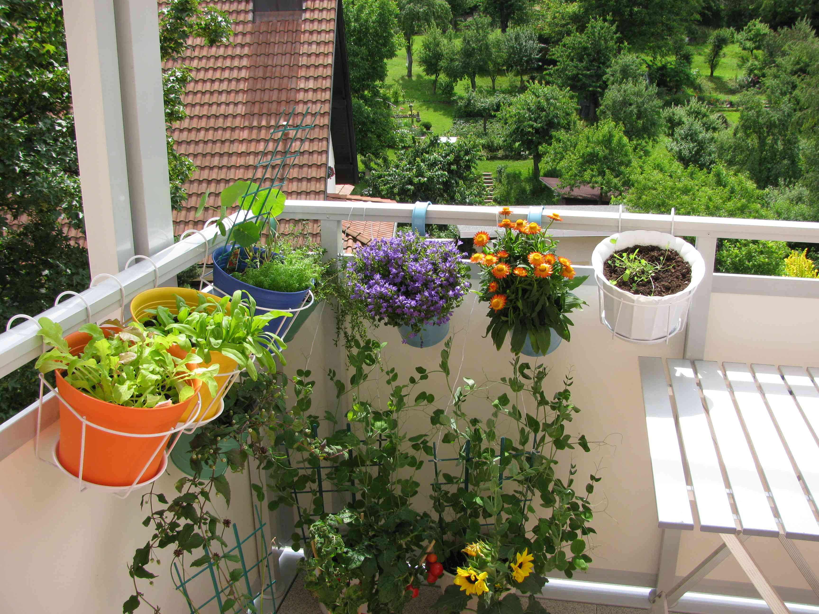 herbs in colorful planters mounted on balcony railing