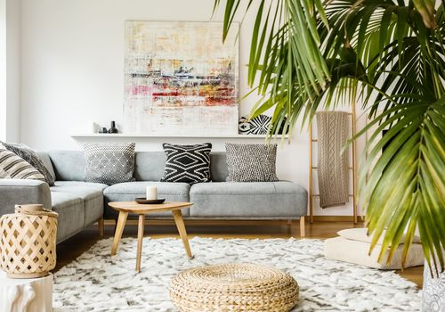palm tree growing in living room with gray couch, white carpet and wicker furniture