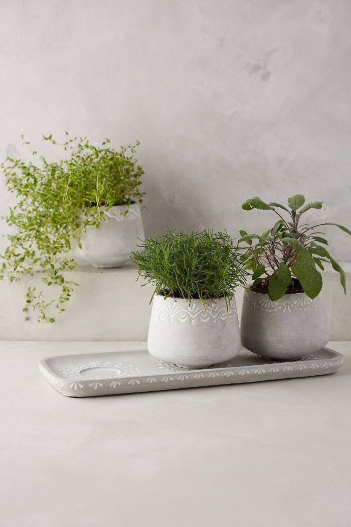 Netara Planter