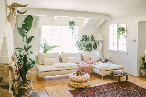 A bohemian living room filled with plants.
