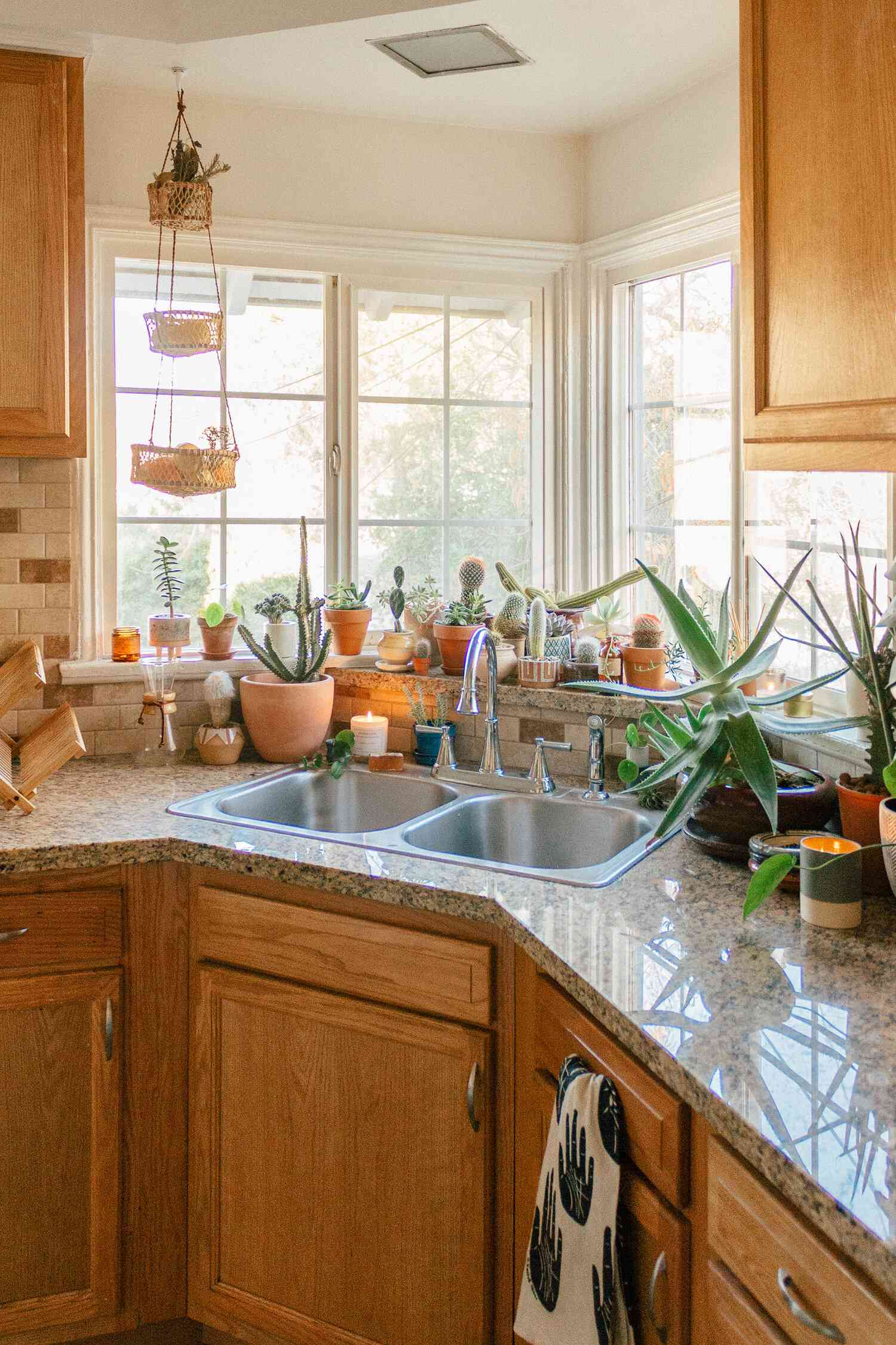 best kitchen ideas - rental kitchen with lots of greenery