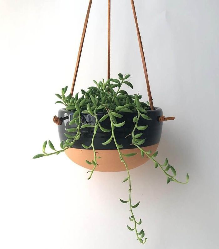 Potted Hanging Dip-Dyed Terracotta Pot