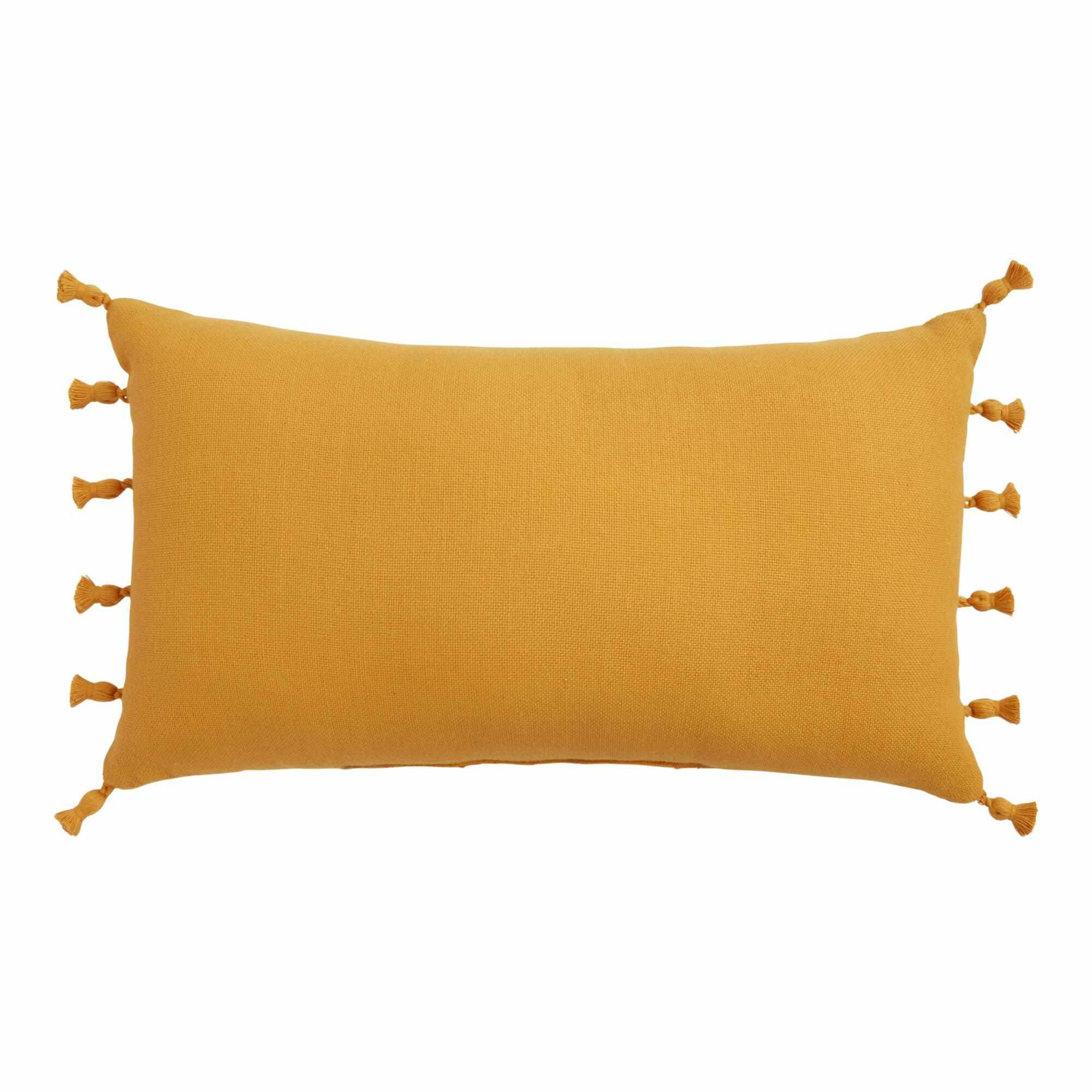 World Market Woven Tasseled Indoor Outdoor Lumbar Pillow