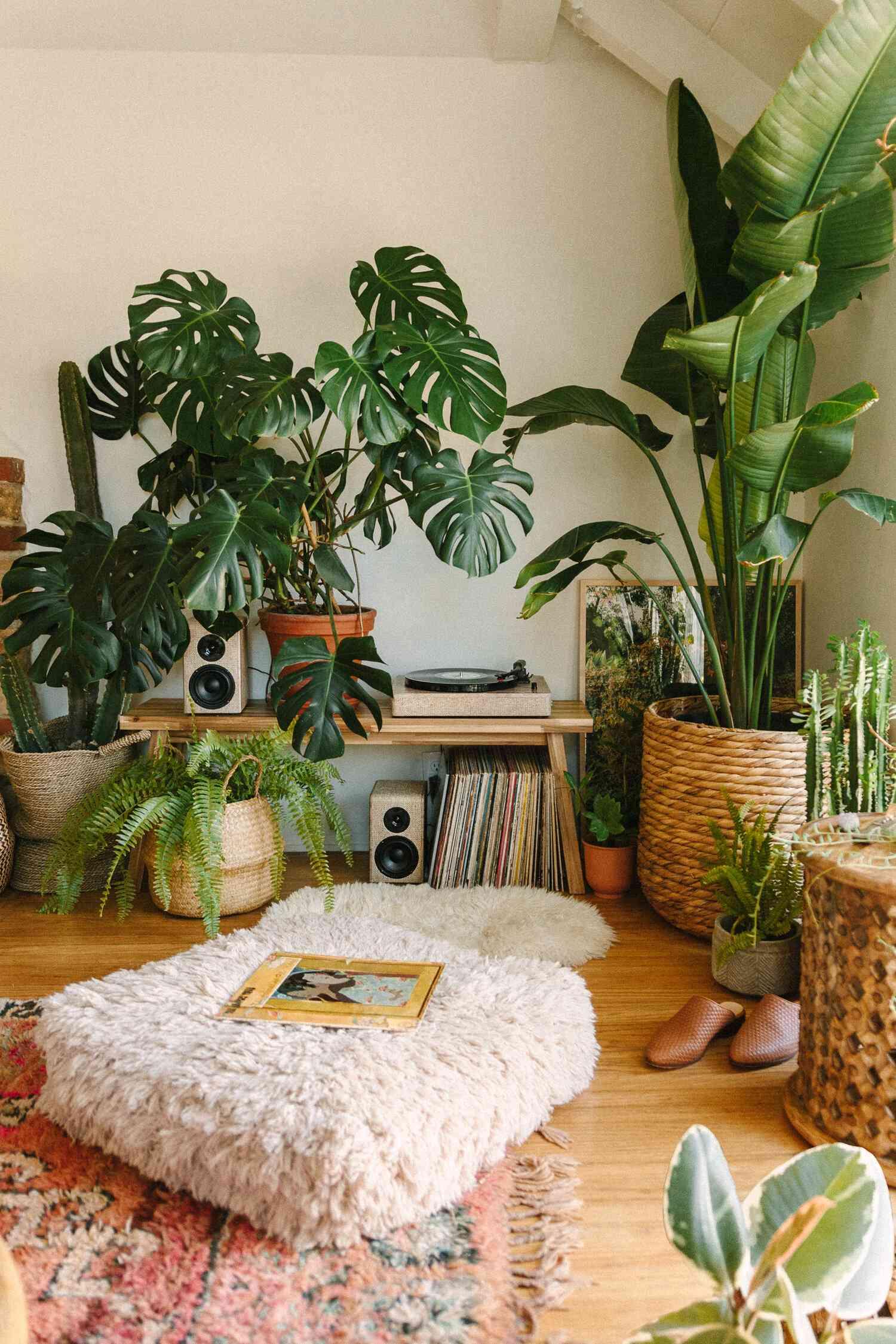 Cozy living room music corner