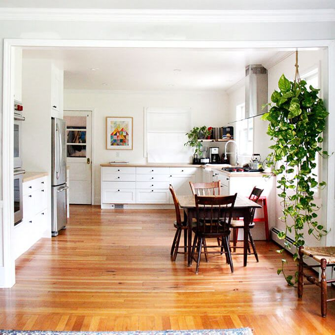 Bright open kitchen with hanging pothos.