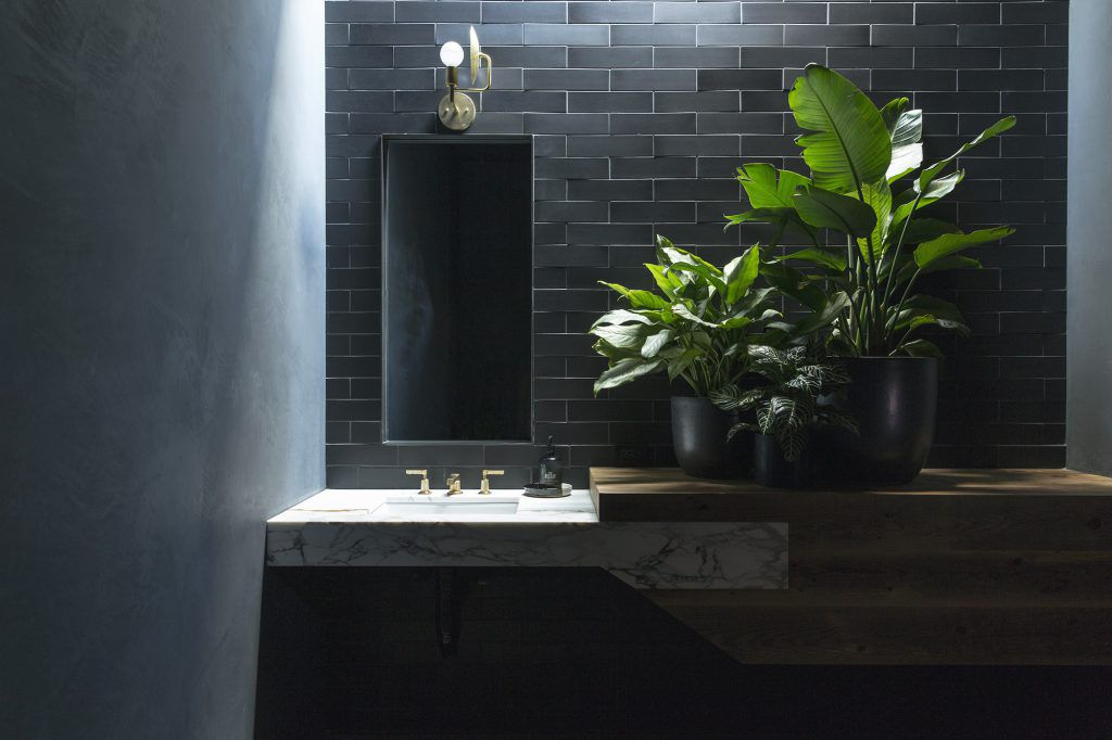 An all-black bathroom with several lush plants