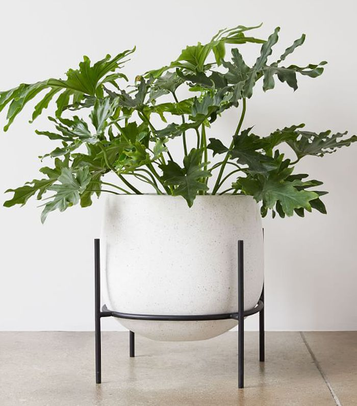 West Elm Stratus Standing Planters