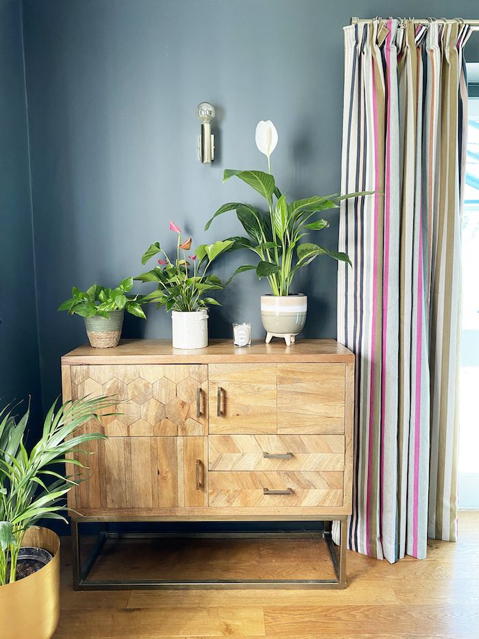 Console with houseplants.