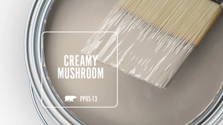 Behr's Creamy Mushroom paint