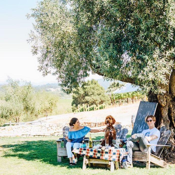 Fecha de picnic