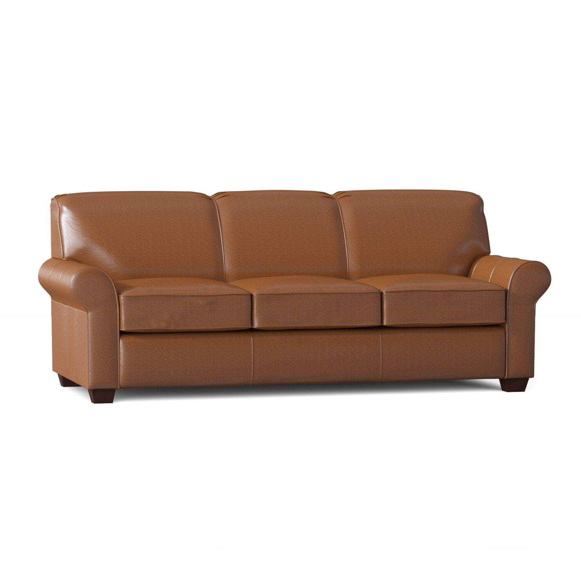 Birch Lane Beames Leather Sleeper Sofa