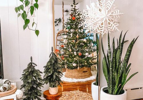 Christmas tree in gold mirror.