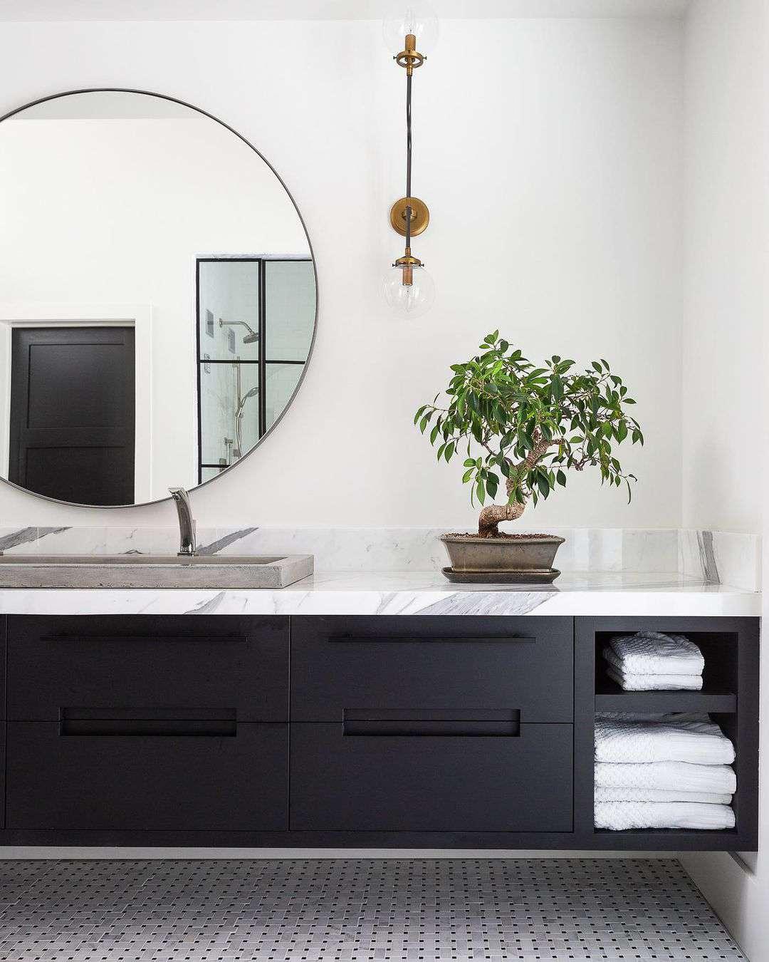 Bonsai on bathroom counter