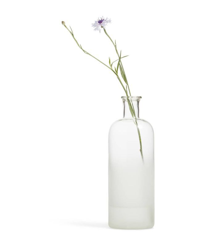 Treasure & bond Small Frosted Bottle Vase