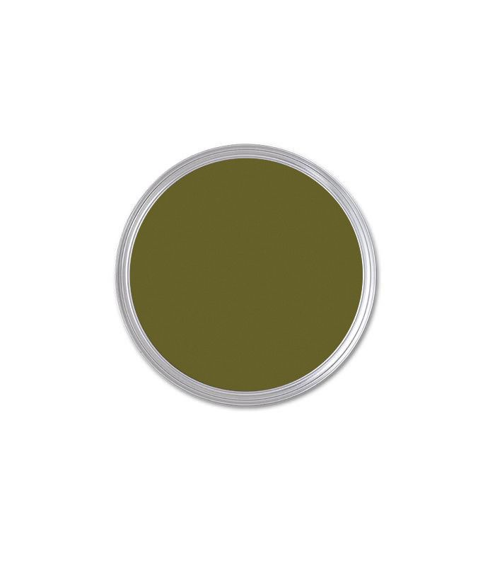 paint color Saguaro by Sherwin-Williams